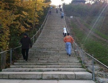 Stairway to Wellness Heaven